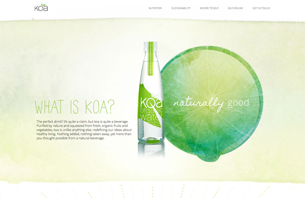 Dapper Site of the Week: Koa Water
